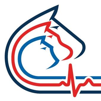 vcs square logo